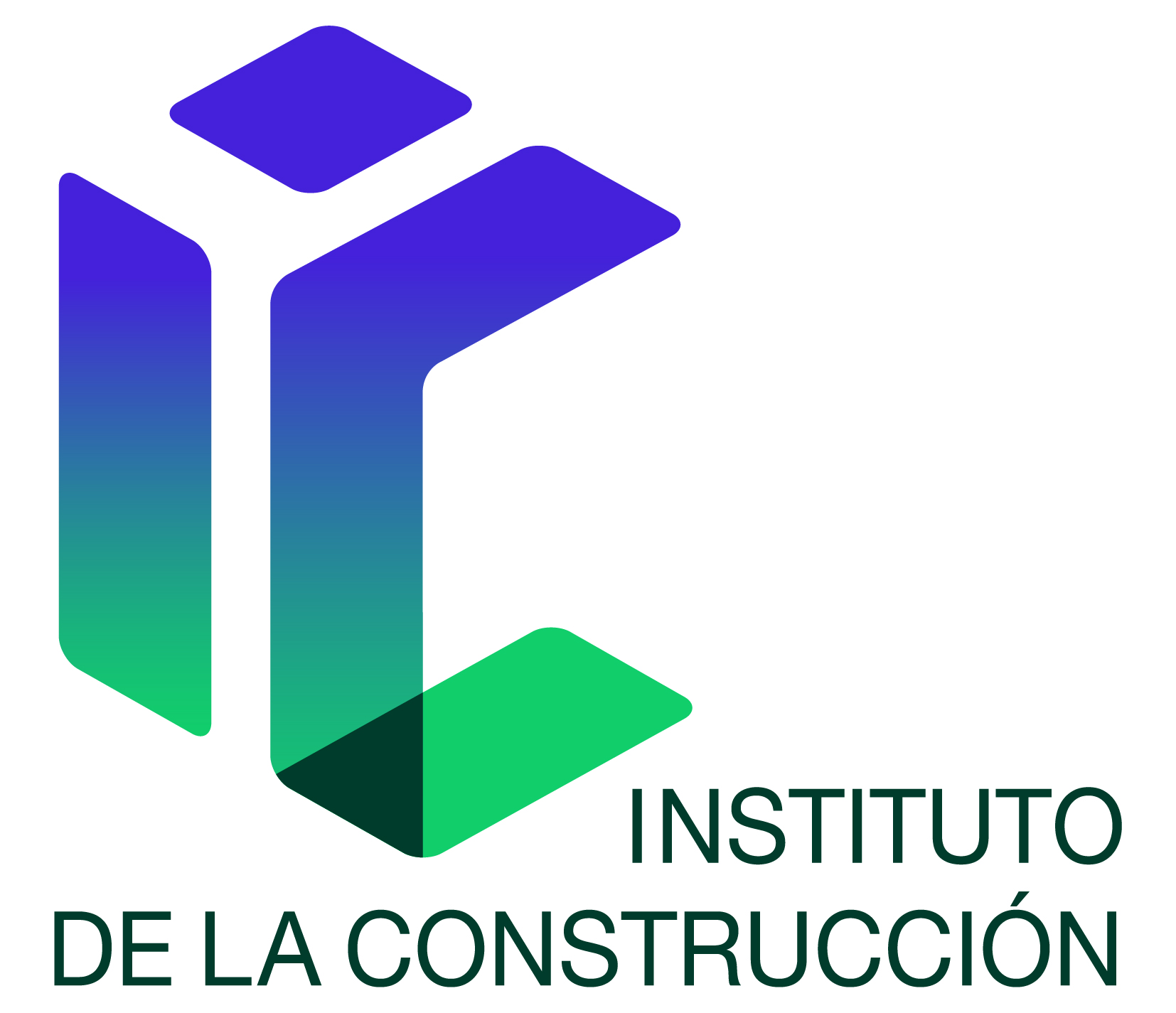 Instituto Construcción